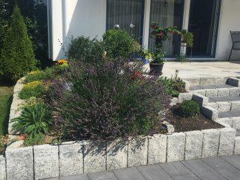Bepflanzung einer Terrasse